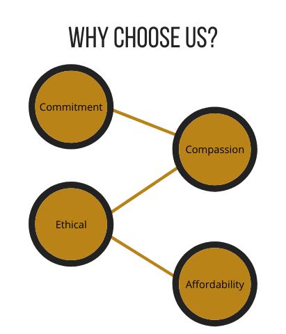 choose bhavya steel